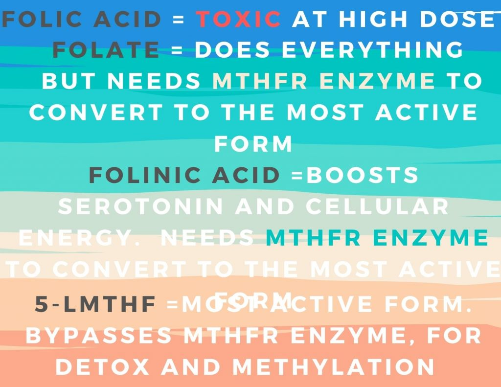 types of folate highlights