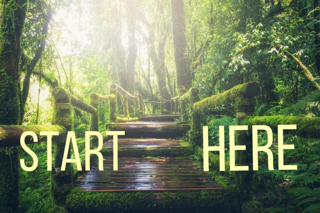 Start here for MTHFR