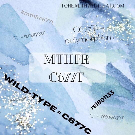 MTHFR C677T mutation