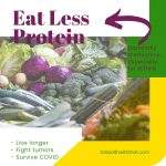 eat less protein - there is a link between methionine, homocysteine, and MTHFR and reduced methionine boosts long life