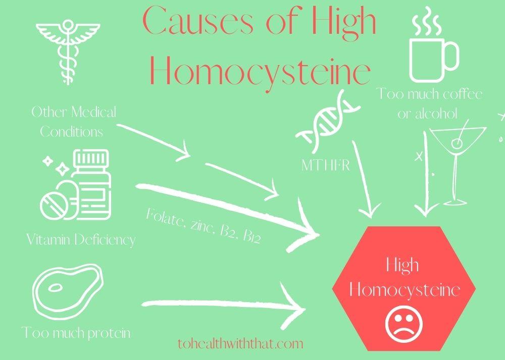 understanding causes of high homocysteine helps you lower homocysteine