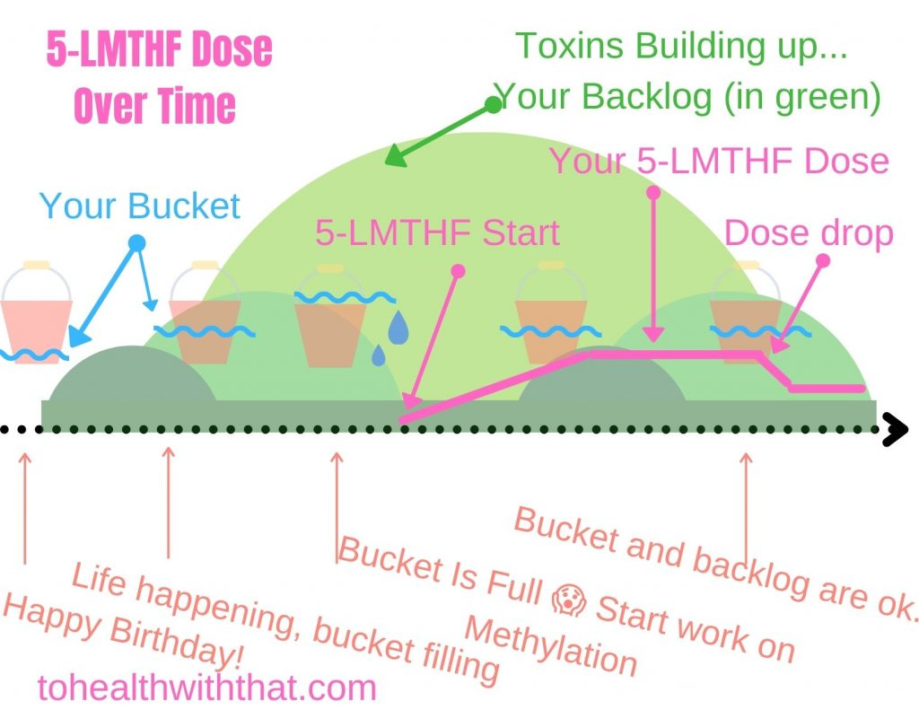 5-LMTHF dose over time
